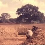 F 11, 119 - Arkæologiske udgravninger 002 (300x198)