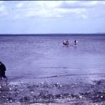 F 11, 58 - Strand ved Tiselholt 001