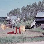 F 11, 63 - Ærtehøst 001