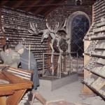 F 11, 96 - Oldtidsmuseet